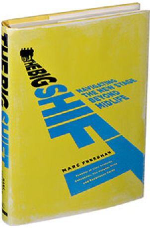 bookcover-the big shift