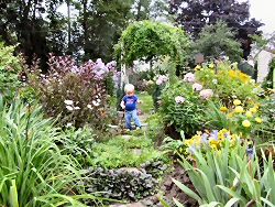 18-month-old Sophie O' Flynn enjoys the garden of her great-grandmother Phyllis Watson in Peterborough, Ontario, Canada.
