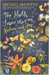 bookcover-The-Moth-Snowstorm